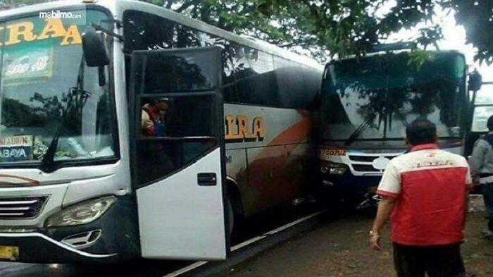 Gambar yang menunjukan armada bus Mira