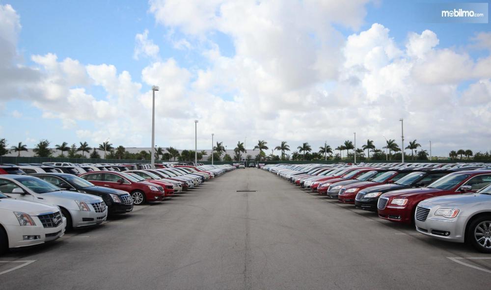 Gambar yang menunjukan diler dengan berbagai mobil