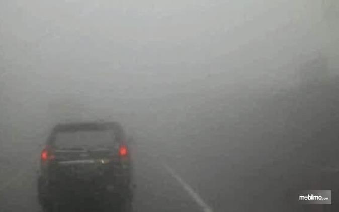 Gambar ini menunjukkan sebuah mobil yang melaju di jalanan yang berkabut tebal
