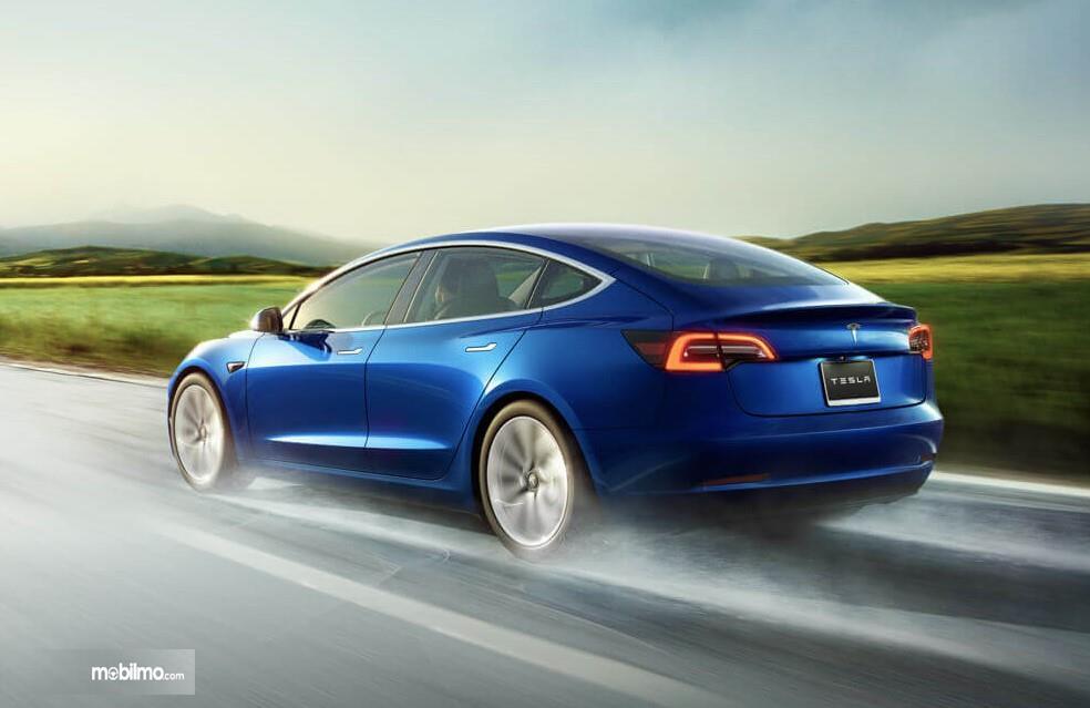 Foto Tesla Model 3 tampak dari belakang