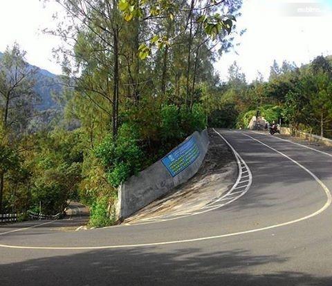 Foto jalanan turunan curam berkelok
