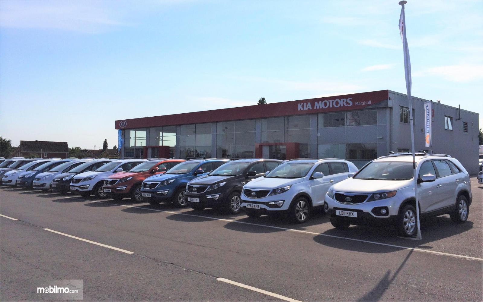 Foto puluhan mobil bekas KIA di depan dealer