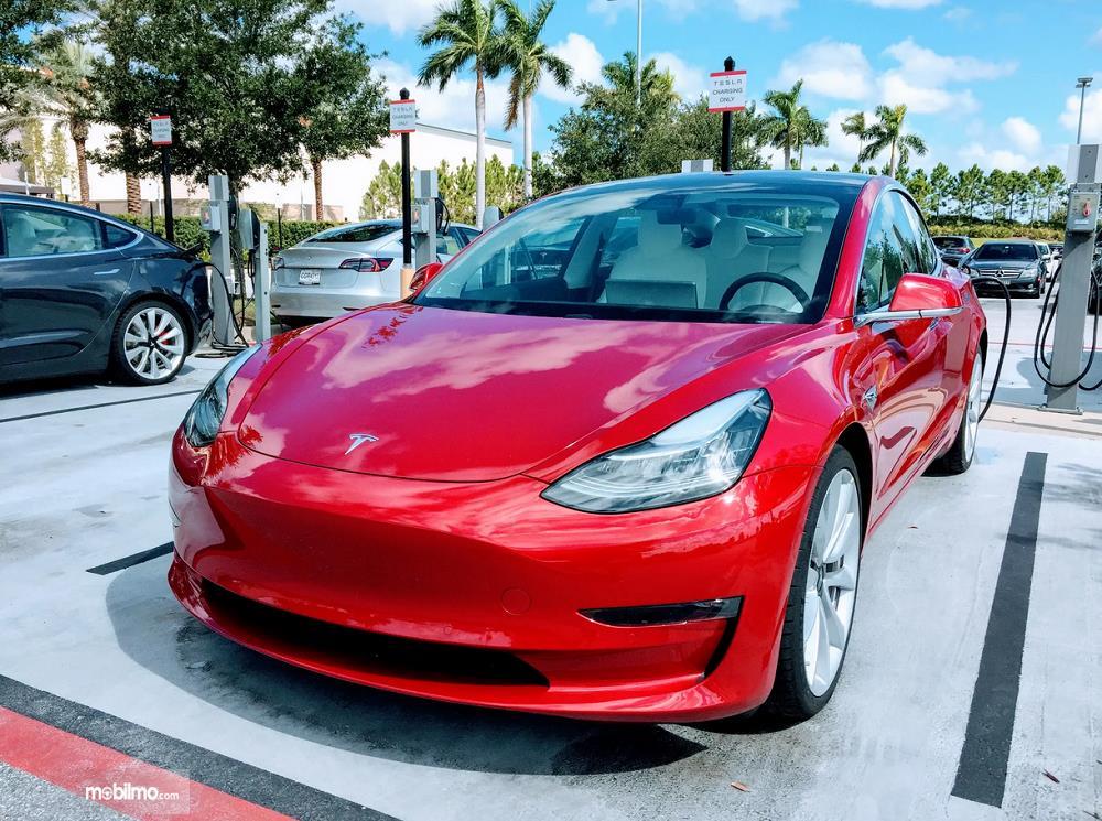 Foto Tesla Model 3 tampak dari samping depan