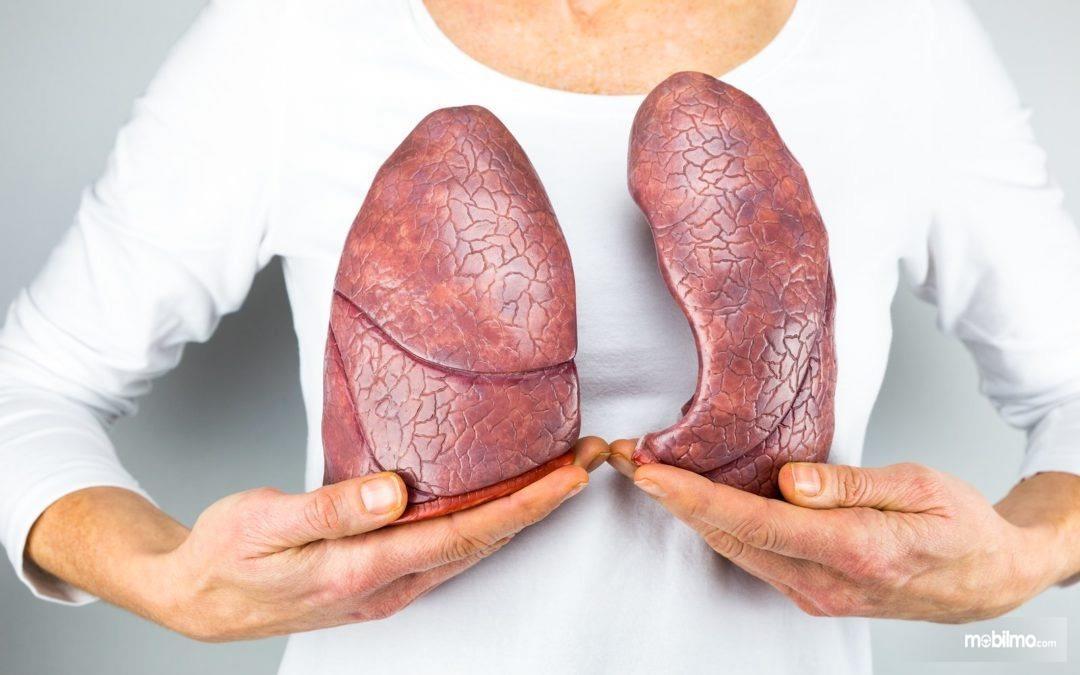 Gangguan kesehatan paru