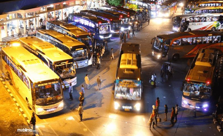 Gambar  ini menunjukkan banyak bus sedang terparkir dengan rapi