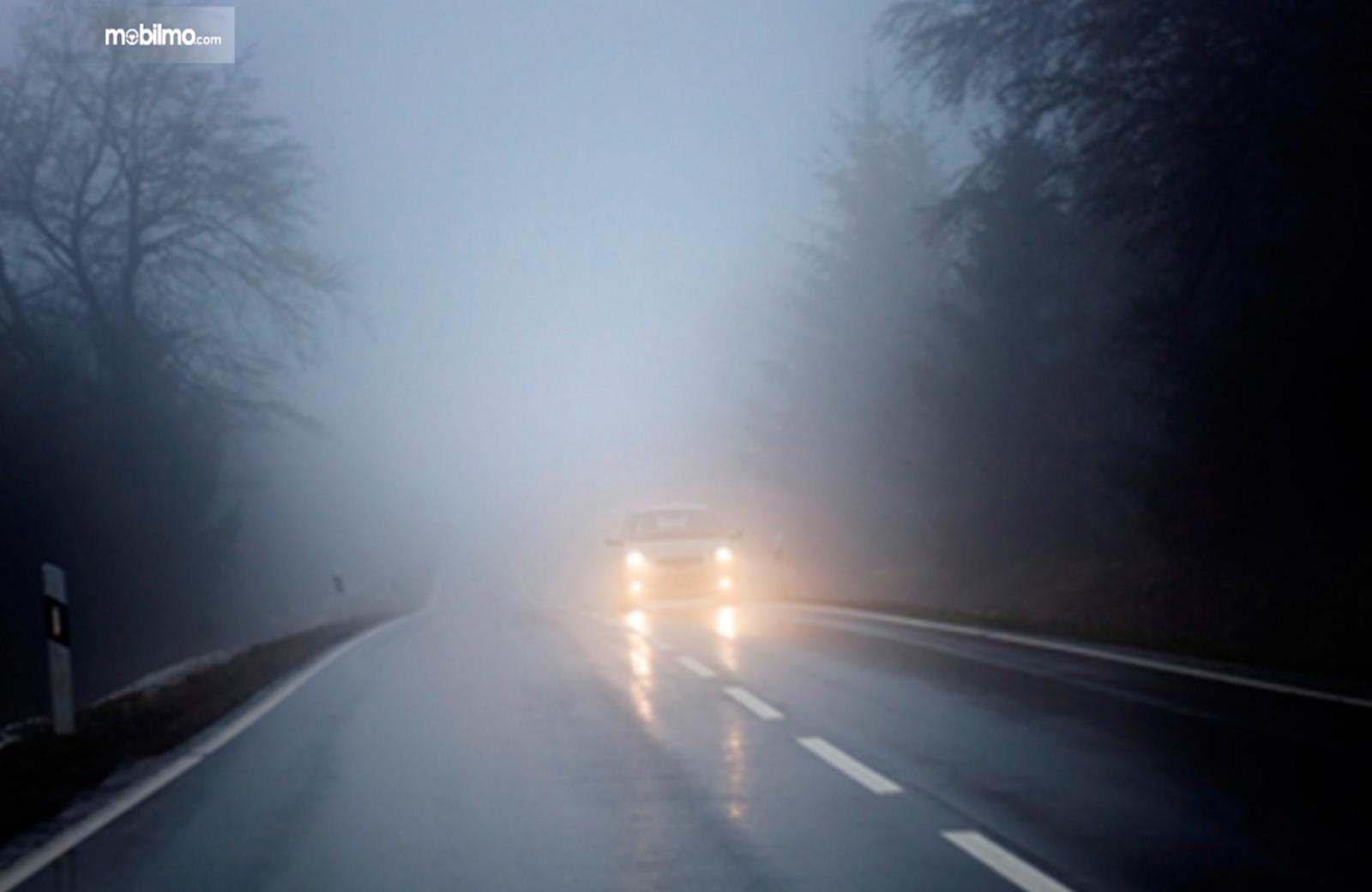 Foto sebuah mobil melintas sendirian di jalanan berkabut