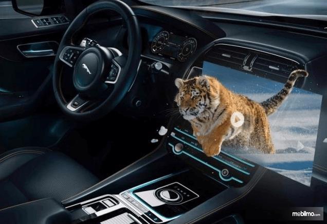 Gambar ini menunjukkan dashboard dan head unit yang terlihat ada harimau keluar