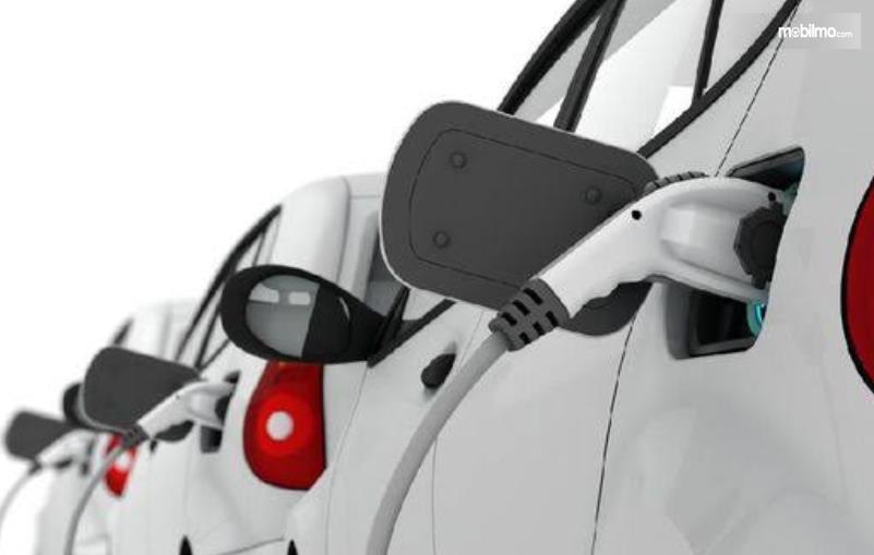 Gambar ini menunjukkan beberapa mobil listrik sedang di isi dayanya