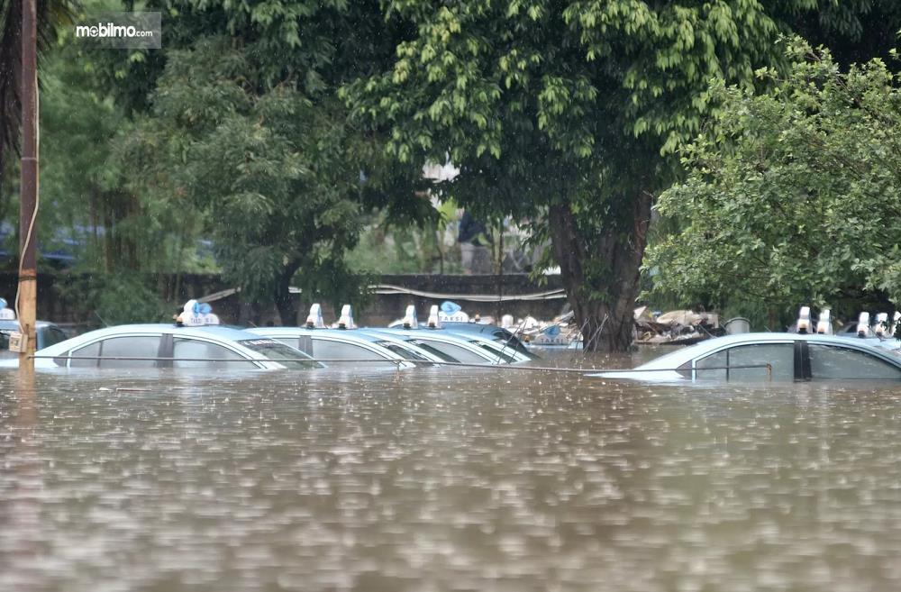 Foto menunjukkan Armada Taksi Blue Bird terendam banjir