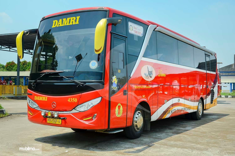 Foto menujukkan salah satu bus DAMRI warna merah