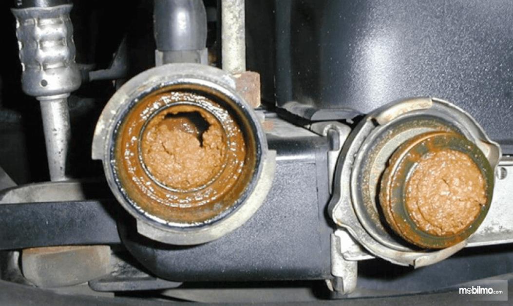 Gambar ini menunjukkan lubang radiator mobil dalam kondisi kotor