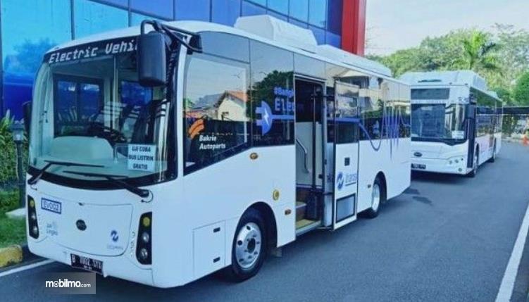 Gambar ini menunjukkan 2 bus listrik TransJakarta tampak samping