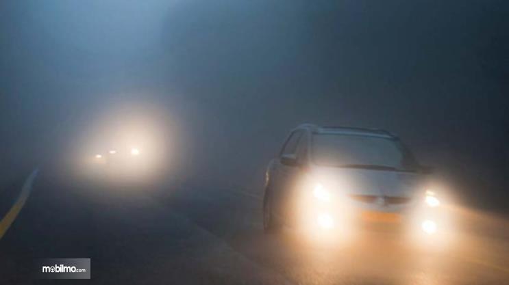 Gambar ini menunjukkan beberap mobil melewati jalanan berkabut