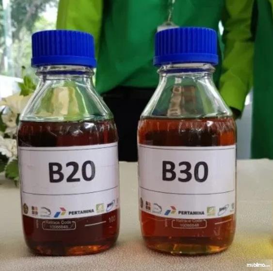 Gambar ini menunjukkan sampel bahan bakar B20 dan B30