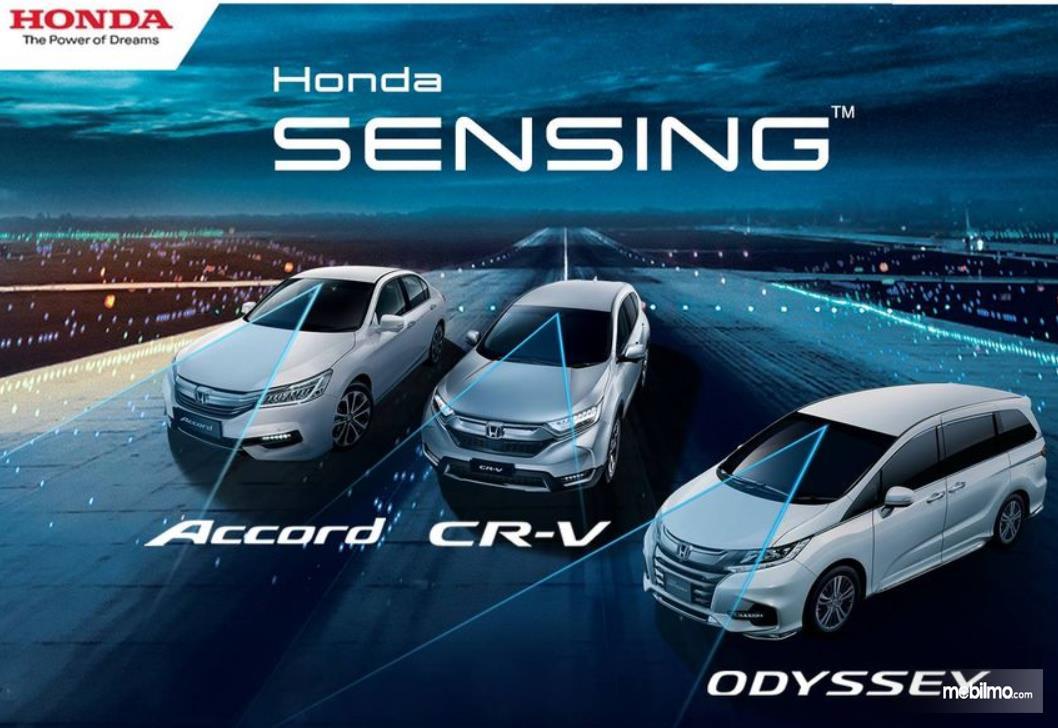 Gambar ini menunjukkan beberapa mobil dengan teknologi Honda Sensing