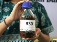 Resmi Dijual, Ini Harga Biosolar B30 di SPBU