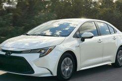 Siap-Siap, Toyota Corolla Bermesin Mesin Hybrid Akan Meluncur Tahun Depan