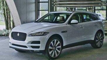 SUV Jaguar F-Pace Mulai Masuk Indonesia Harganya Dibanderol Rp 2 Milyaran