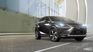 Review Lexus NX300 Luxury 2018