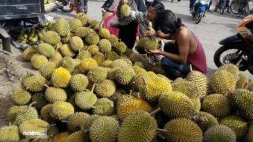 Pakai Mobil Mewah Harga Durian Di Malaysia Lebih Mahal, Pemerintah Lakukan Pemeriksaan